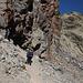 Im Aufstieg vom Refuge de l'Erco zum Monte Cinto - Zur Abwechslung geht's kurz durch Gehgelände.