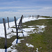 Stallflue Gipfelplateau