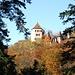 Nochmals die Burg Wildenstein