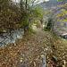 am Ende des Dorfes folge ich noch etwas weiter dem Wanderweg ungefähr bis zur Höhe des Nadelbaums auf der rechten Seite