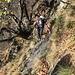 Passaggio attrezzato sul sentiero tra Margossogno e Vercio
