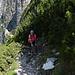 Legföhrenweg zum zweiten Teil des Klettersteigs