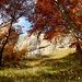mit begeisternden Herbstfarben und Ausblick schalten wir hier eine Rast ein