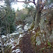 le sentier sur la crête du Barrenkopf