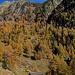 unten die Joli-Alp, davor Tatz-Giesch Süe