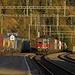 noch immer fahren viele Güterzüge auf der Lötschberg-Bergstrecke, Kreuzung  in Hohtenn