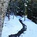 Torrent Neuf - eigentlich heißt sie hier Bisse de Savièse. Es fließt noch Wasser