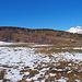 Auf dem Plateau von Zeneggen
