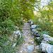 Nach dem langen Aufenthalt in der Umgebung der Ponte die Salti hat nun die kurze Wanderung nach Brione begonnen