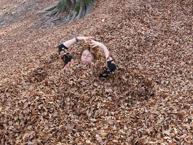 Può essere che il bagno di foglie di faggio sia salutare...