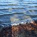 Wie am Meer