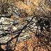 Muretto lungo il sentiero nei pressi del colletto di fronte a La Balma (circa 1400 m)