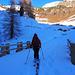 nei pressi dell'Alpe Saluver