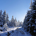 Rückmarsch bei schönstem Winterwetter.