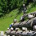 Meine Kinder klettern sehr gerne :-)