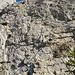 Weiter geht es hinauf über Fels und später Gras