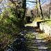 Wege entlang der Rebberge