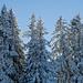 Immer noch schön verschneit
