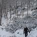 Inverno (foto di Ferruccio)