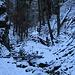 Entlang des Ruisseau de la Combe Grède.
