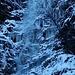 Der Baumstumpf eingekreist, ich links daneben. Ein 50m Doppelsteil reicht bei niedriger Schneelage wie heute genau bis runter.