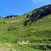 der Weg zum Hochgerach geht über die Wiesen nach rechts den Berg hinauf