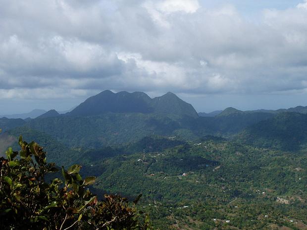Mount Gimie-der höchste auf St.Lucia-überwuchert von Dschungel
