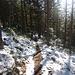 Le tracé du sentier dans la neige : comme un fil conducteur .