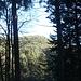 Le sommet du Zwergberg .