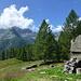 Zurück bei Barm, einem der allerischönsten Flecken im Tessin...links unter den Wolken die Alpe di Carded