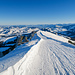 Zu Beginn sind Winterwanderweg und Schlittelpiste kombiniert