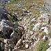 Im Aufstieg zwischen Zeleni vir und Velika previja - Rückblick auf das kurze, seilgesicherte Steilstück.