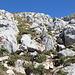 Im Aufstieg zwischen Zeleni vir und Velika previja - In einer Höhe von ca. 2.240 m schlängeln wir uns durch Felsblöcke.