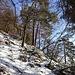 liebliche Wegfortsetzung - mit leichter Schneeauflage ...