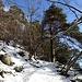 malerisches Bergwandern auf dem Clubwägli 1