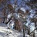 malerisches Bergwandern auf dem Clubwägli 3
