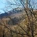 A Velate, a pochi inuti dalla chiusura dell'anello, uno scatto ancora sull'amato Sacro Monte.