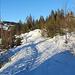 Entlang der markierten Schneeschuhwege, zurück zur Ibergeregg.