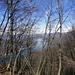 Durchblick im blätterlosen Wald: Luganosee