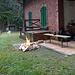 Ein kleines Feuerchen durfte nicht fehlen. Danke an den Frankenwaldverein OG Schauenstein für die Holzspende.