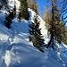 Proseguiamo, anche su belle pendenze, ma la neve è tanta e tiene bene