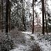 Wenig Schnee beim Gasthaus Schlehenberg