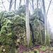 Die Felsen des Eibengrates, auch dieser war schneefrei. Da ich den Grat schon in- und auswendig kenne, ging ich diesmal vorbei. Immerhin hatte ich noch 26 km vor mir.