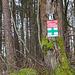 Vorbildliche Markierung des FAV, bei größeren Wiesenquerungen hängen hier sehr große Hinweisschilder. Davon können sich alle anderen markierenden Vereine an diesem Weg eine Scheibe abschneiden.