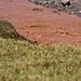 Das Wasser ist vielerorts ungenießbar, die Kontraste mit dem ersten Gras seit Wochen aber großartig!