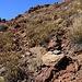 Der Weg vom namenlose Sattel P.2506m hinauf zum Gipfel ist dank zahlreichen Steinmännchen nicht zu übersehen!