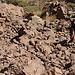 David im Aufstieg durch die Felsbarriere zum Gipfelplateau. Die Schwierigkeiten überstiegen nie ein T3 - und auch das T3 gilt nur für wenige Schritte.