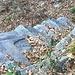 Scalini tra i terrazzamenti tra Castigiasco e Cà d'Arnal