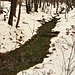 Il torrente Spessa.