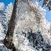 In der Sonne schneite es Eiskristalle